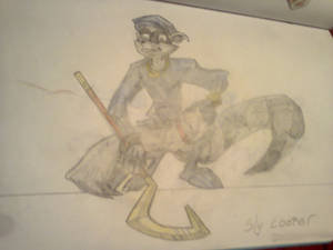 Sly Cooper from Sly game series