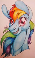 Rainbow Dash bust by VertAyara