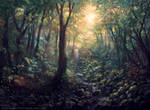 Magic: The Gathering M20 Promo Forest