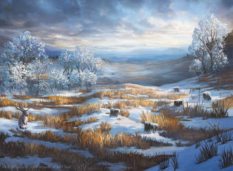 Snow-Covered Plains from Magic: The Gathering