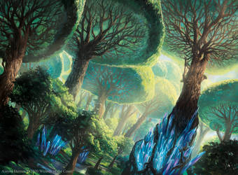 Magic: The Gathering- Ikoria Forest