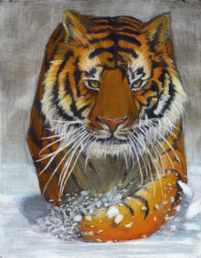 TIGER by Alayna