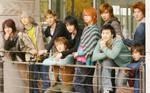 Super Junior 13 Wallpaper