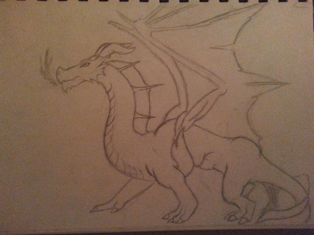 Random Dragon by dreshaq