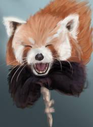 Red panda - speepaint