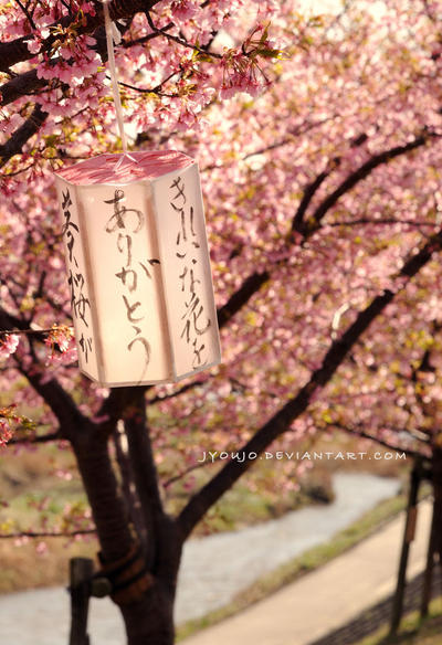spring leaves by jyoujo