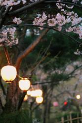 beauty of simplicity by jyoujo