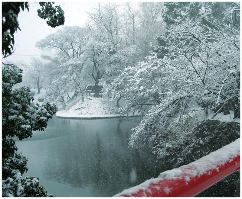 snow in by jyoujo