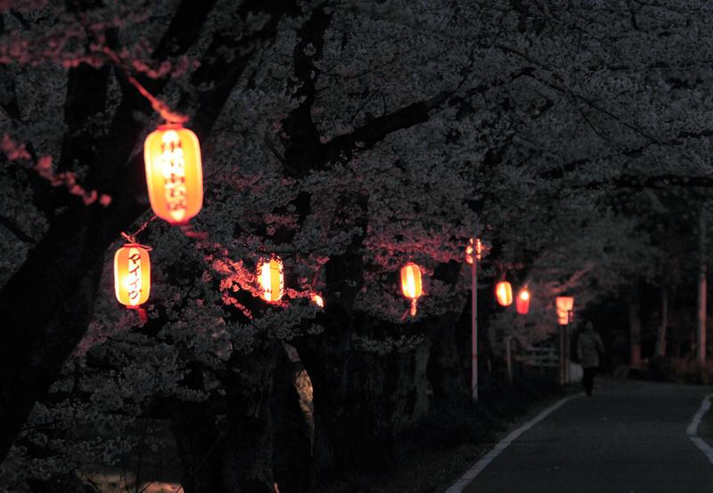 Midnight In The Garden Of Evil By Jyoujo On Deviantart