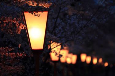 ten thousand fireflies by jyoujo