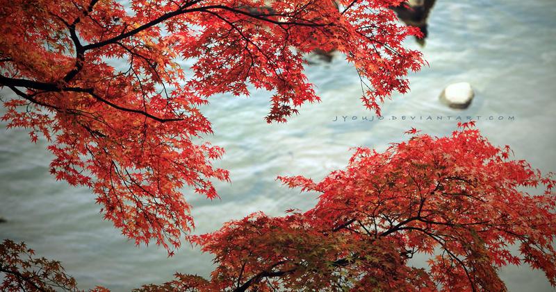 in clean waters by jyoujo