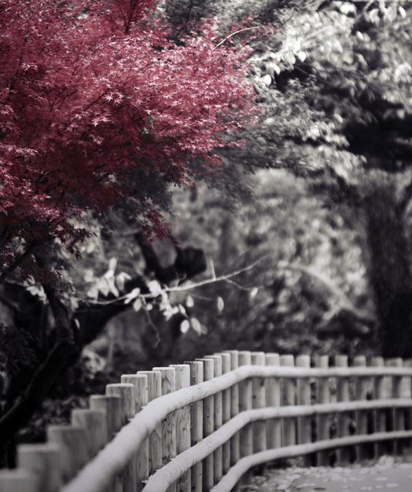 fade to black by jyoujo