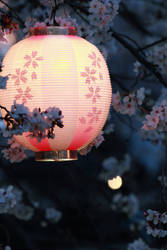 sakura's night of dreams-print by jyoujo