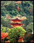 Miyajima's Pagoda by jyoujo