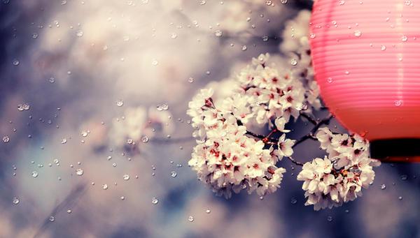 brighter days by jyoujo