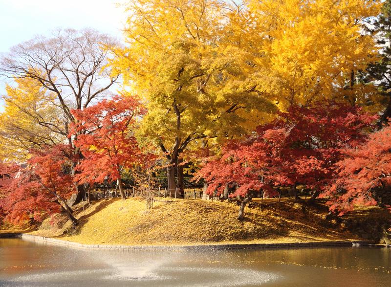 Autumn wonders by jyoujo