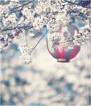 a little bit of light by jyoujo