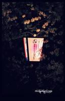 2014 sakura nightlights by jyoujo
