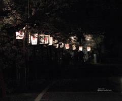 2014 sakura rainy street by jyoujo