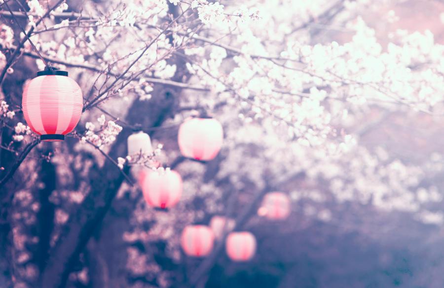 sakura - The Unbearable Lightness of Being by jyoujo