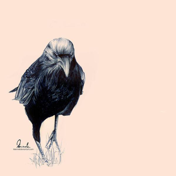 Ballpoint Pen Crow by kleinmeli