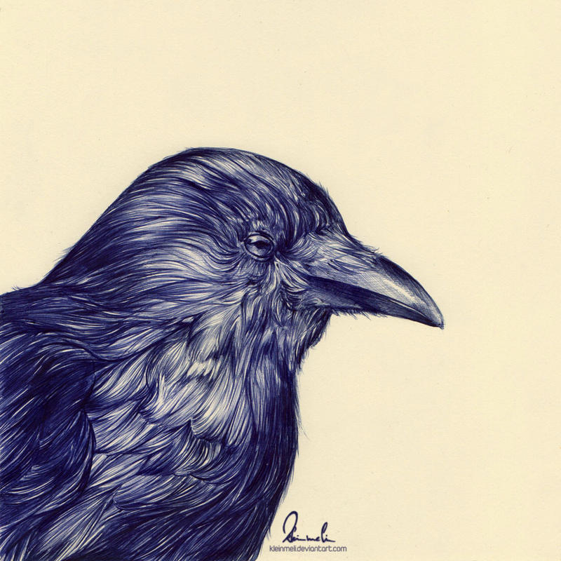 Ballpoint Pen Black Crow by kleinmeli