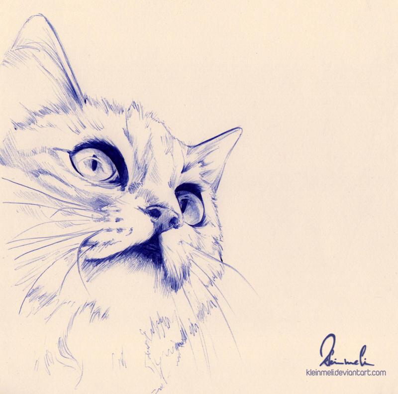 Ballpoint Pen Cat - WIP by kleinmeli
