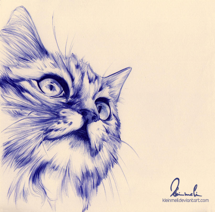 Ballpoint Pen Cat by kleinmeli