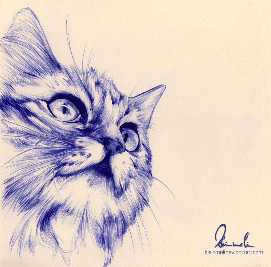 Ballpoint Pen Cat by kleinmeli