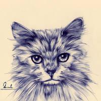Ballpoint Pen Cat