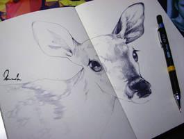 Dear Deer (WIP) by kleinmeli