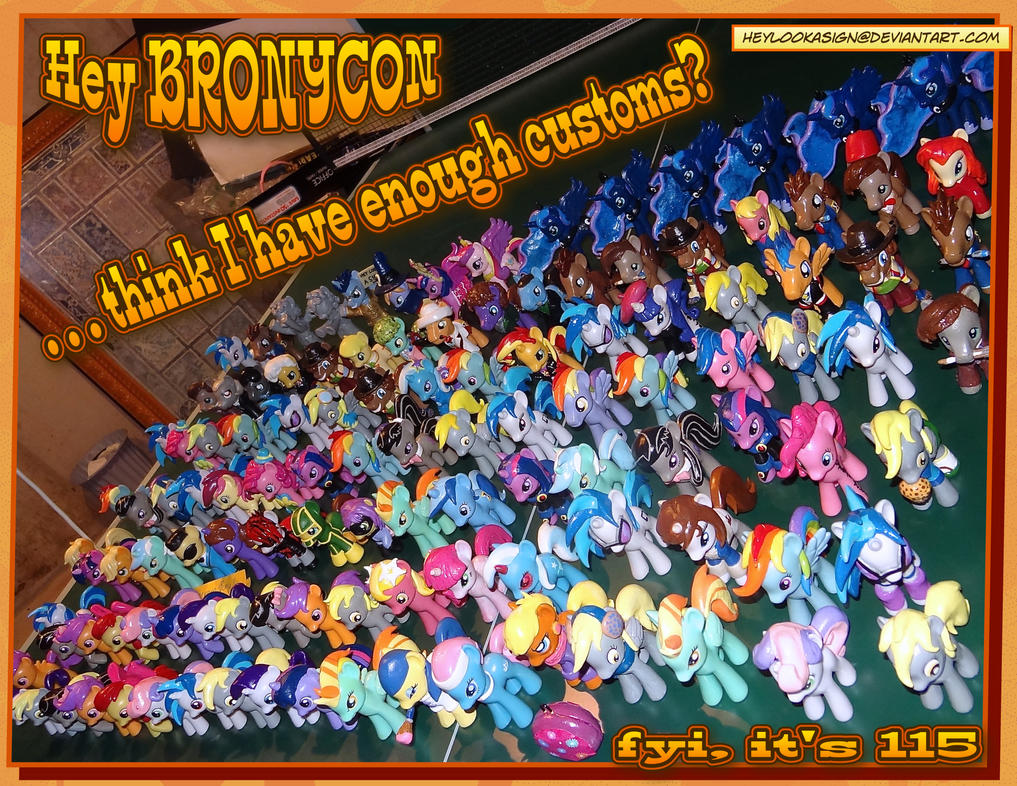 Bronycon 2013 Customs by HeyLookASign