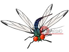 Dragonfly by The-Knick