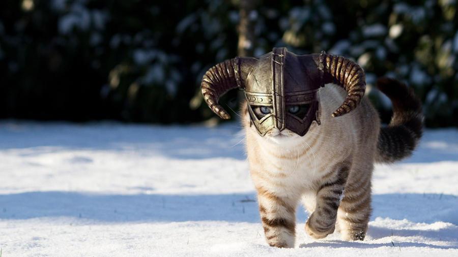 FUS-RO-CAT