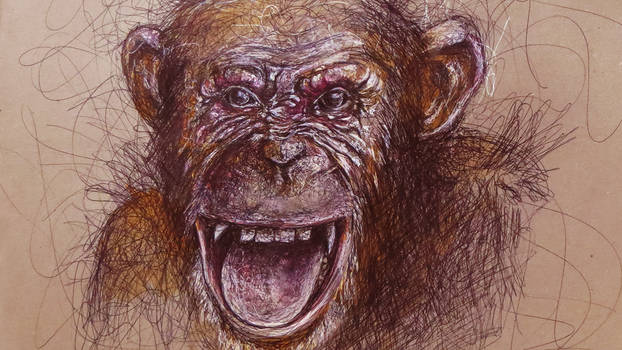 Chimpanzee - Drawing - Pen drawing - How to Draw