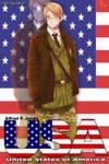 APH : USA Poster