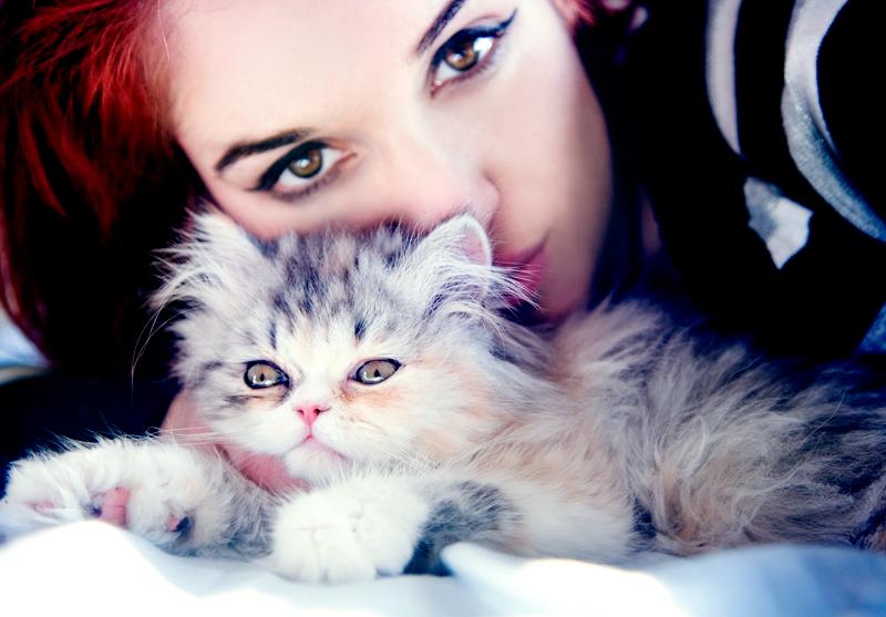 Kitty Love by WildRainOfIceAndFire