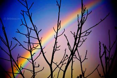 Somewhere over the rainbow II by WildRainOfIceAndFire
