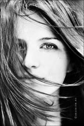 Mon ami, le vent by WildRainOfIceAndFire
