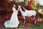 Autumn fairytales III