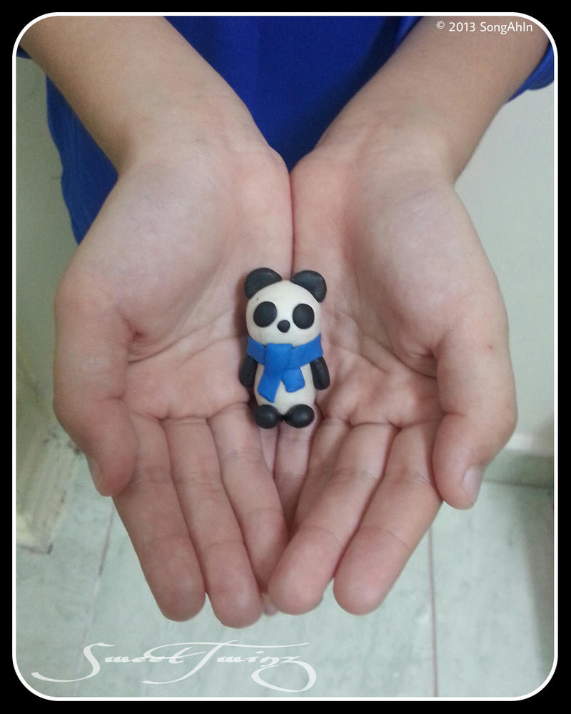 Panda by SongAhIn