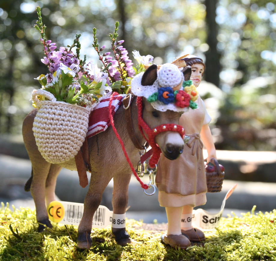 Flower power donkey by mojcaj