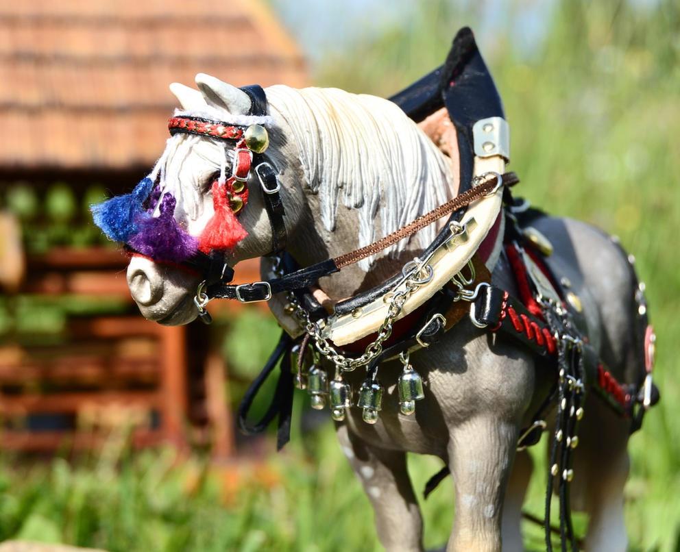 A proud farm horse by mojcaj
