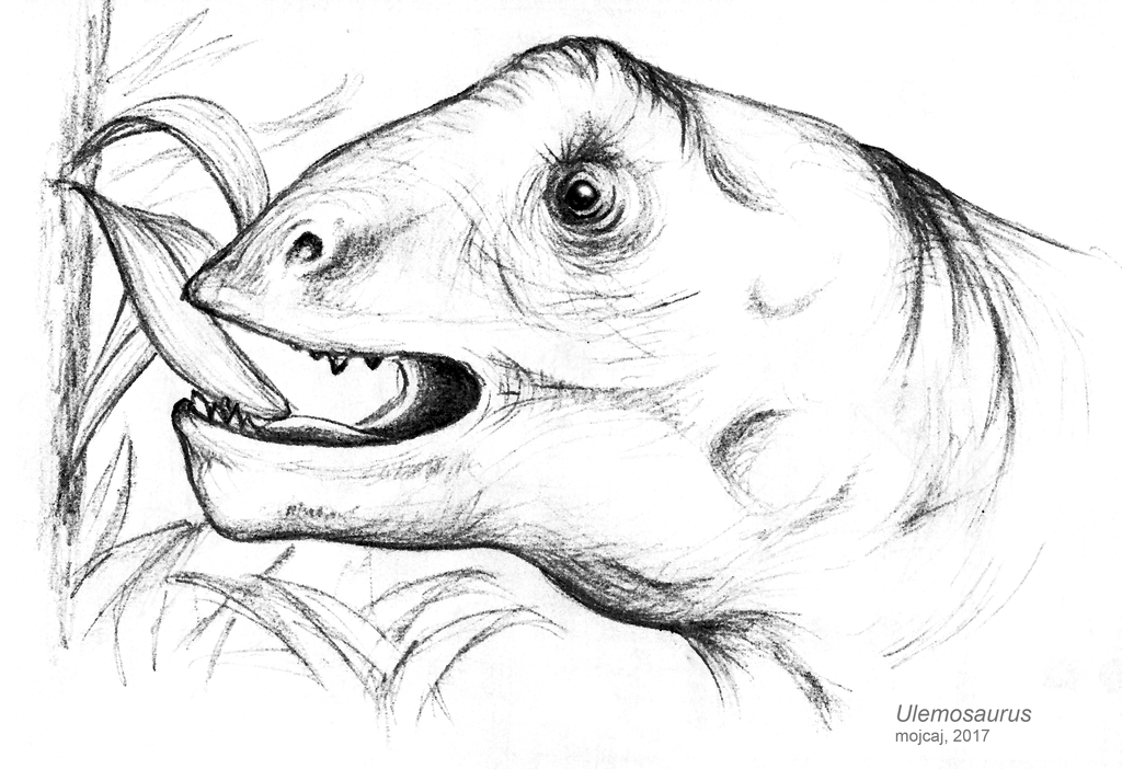 Ulemosaurus by mojcaj