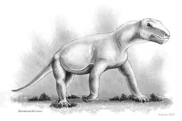 Biarmosuchus tener