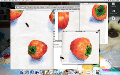 Desktop with Persimmons