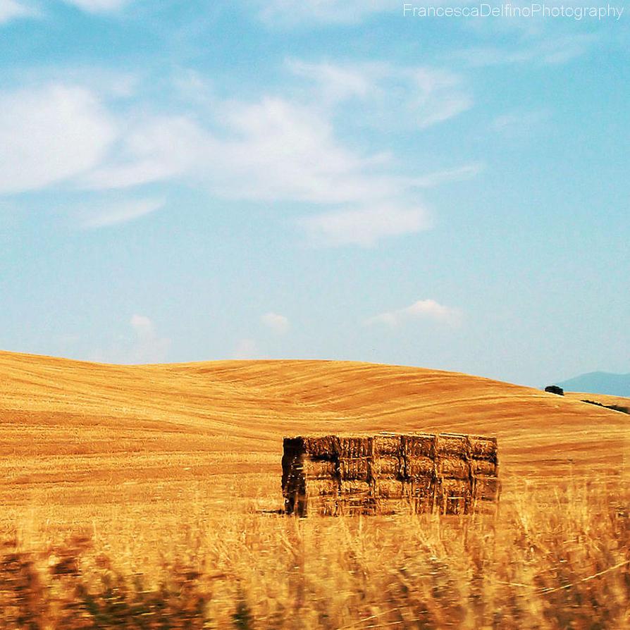 Tuscan countryside by FrancescaDelfino