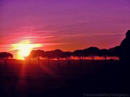 Sunset on Pisa by FrancescaDelfino