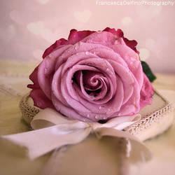 Soft and romantic rose by FrancescaDelfino