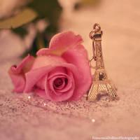 Romantic Paris by FrancescaDelfino